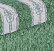 Fanni-zöld kombi